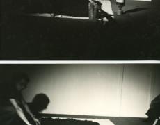 Agricultor-oris, Marigliano (Na)-1977 (Davide e Rescigno)