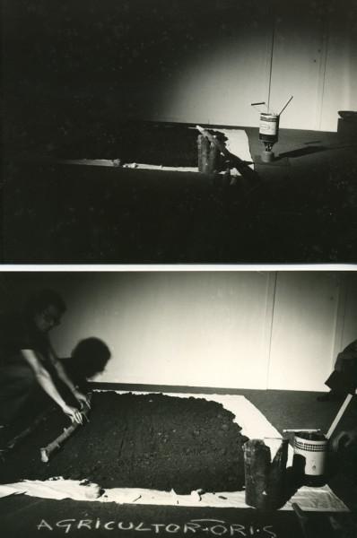 14 Agricultor-oris, Marigliano (Na) 1977 (Davide e Rescigno)