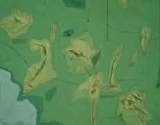Topografia verde-1974