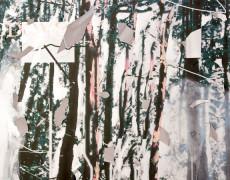 Dove-1990