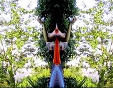 Venere feconda se stessa-2005