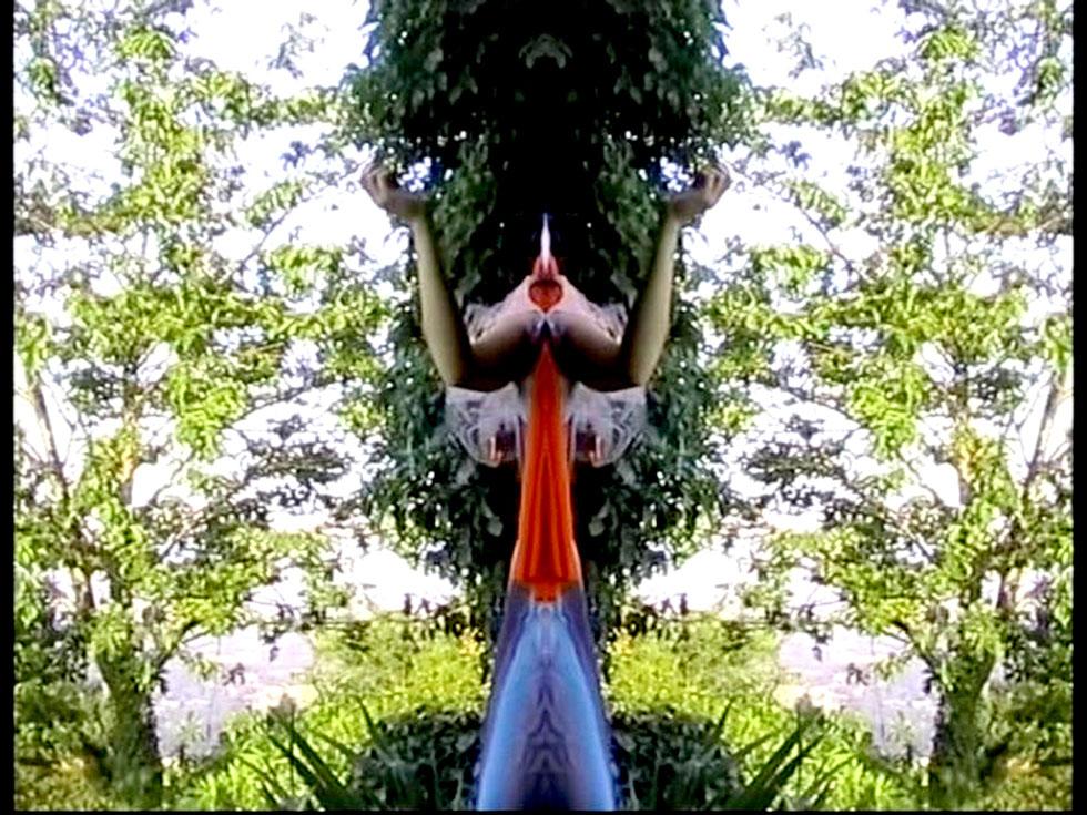 30-Venere feconda se stessa- 2005(videoinstallazione)