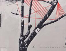 Il violino è di albero e di corde (Installazione ambientale)-1972