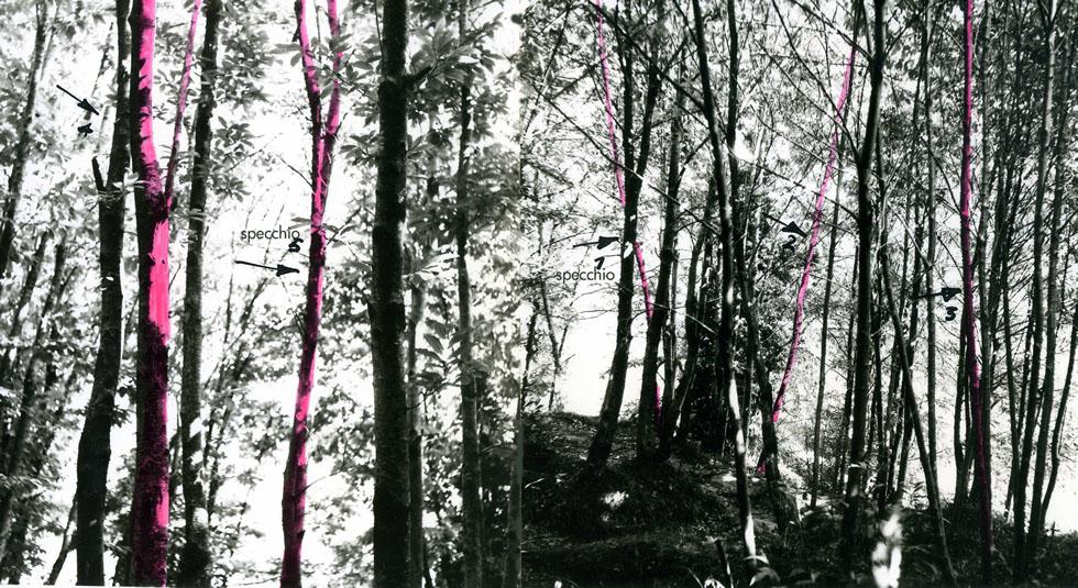 8-Sentiero di Pollicino  (Intervento ambientale)- 1972